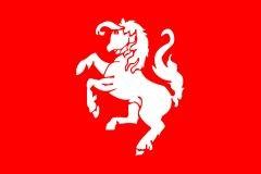 Vlag Twentse Ros   Twente vlaggen 30x45cm
