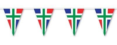 Vlaggenlijn Groningen 5m1 Groninger vlaggenlijnen met wimpels