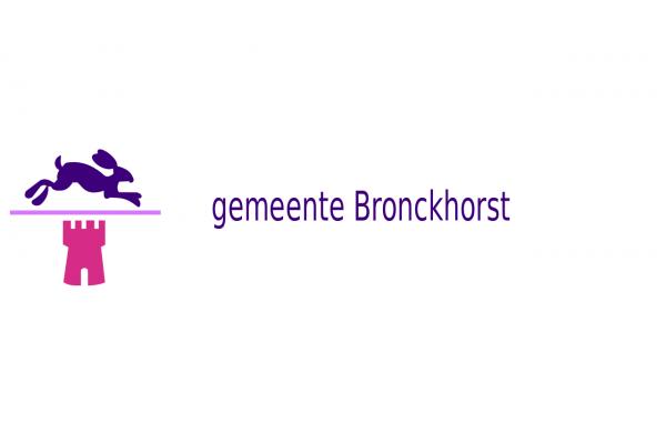 Vlag Bronckhorst