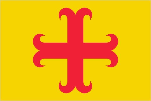 Vlag gemeente Oegstgeest 20x30cm Oegstgeester vlaggen kopen