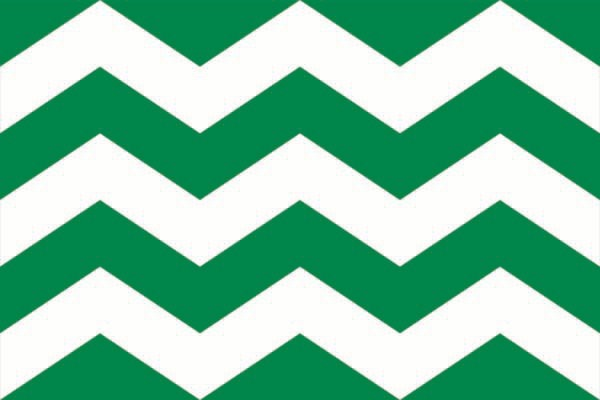 Vlag Westland | Westlandse vlaggen 70x100cm