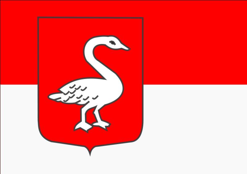 Vlag gemeente Huissen | Huissense vlaggen 20x30cm