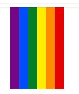 Vlaggenlijn regenboog 9m, 30 vlaggetjes van 15x22.5cm
