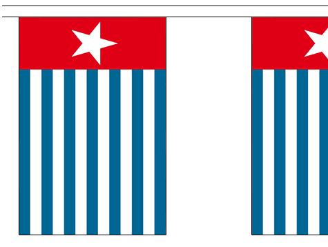 Vlaggenlijn West Papua 9m