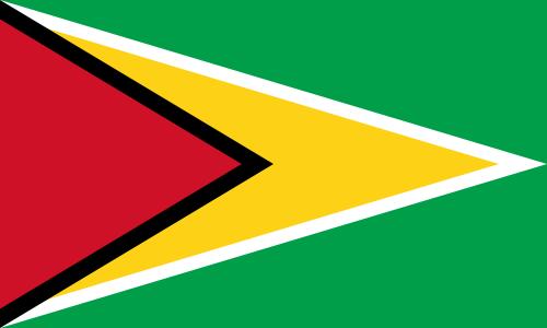 tafelvlaggen Guyana 10x15cm | Guyanese tafelvlag