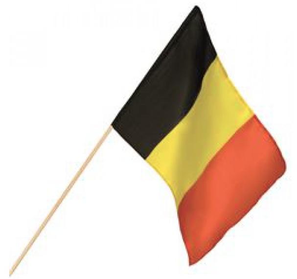 Zwaaivlag België, Belgische zwaaivlaggen 30x45cm luxe