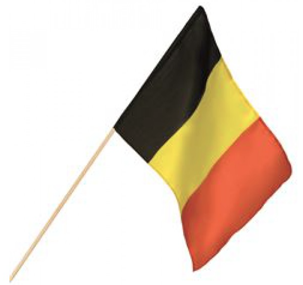 Zwaaivlag België 30x45cm