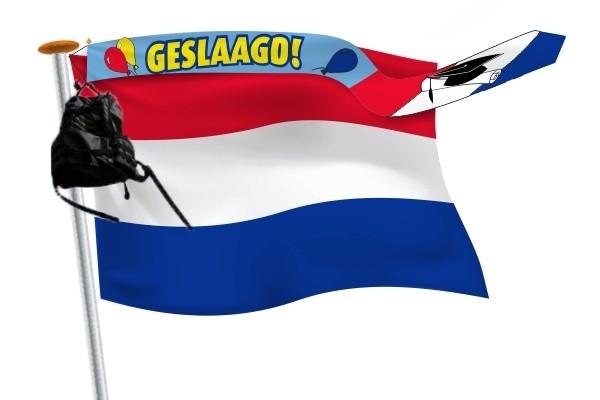 geslaagd wimpel 25x300 blauw met Nederlandse vlag