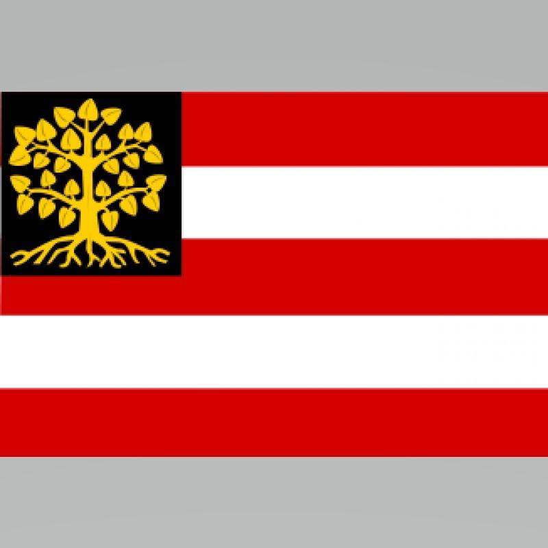 Vlag Den Bosch 30 x 45cm