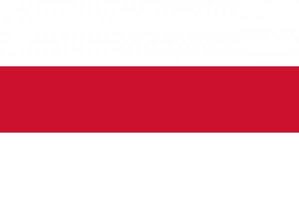Grote vlag Enschede