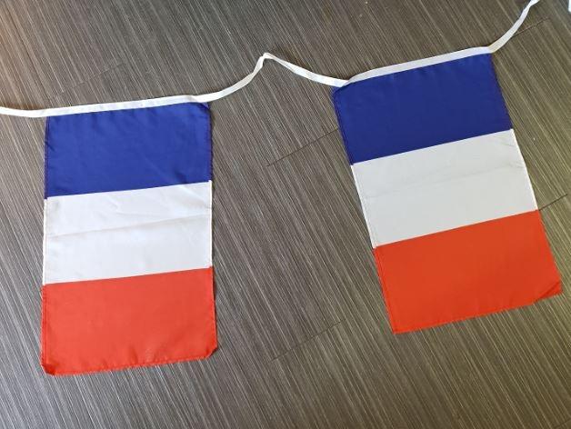 Vlaggenlijn Frankrijk 10m XL stof vlaggen 30x45cm
