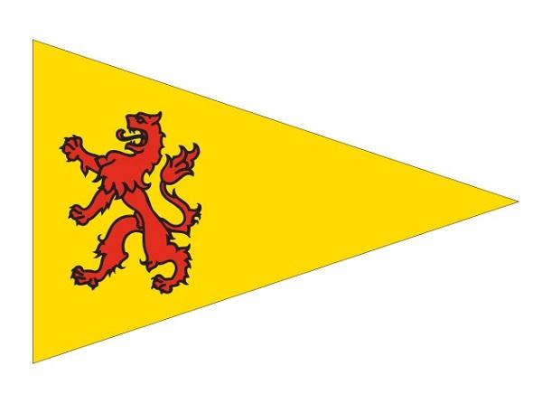 Puntvlag Zuid-Holland 30x45 vaantje wimpel