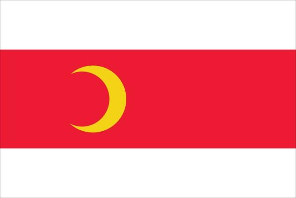 vlag Doesburg 70x100cm