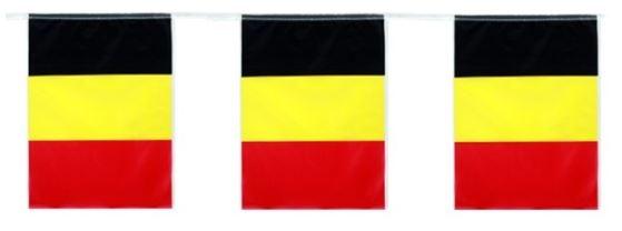 Belgische vlaggenlijn rechthoekig 5m