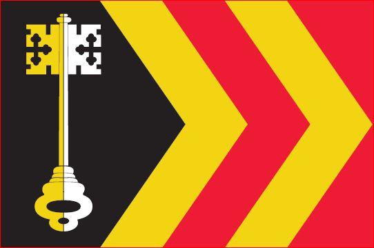 Vlag gemeente Bladel 30x45cm Bladelse gemeentevlag bootvlag