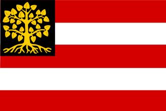 Vlag gemeente Den Bosch vlaggen 's-Hertogenbosch 70x100cm