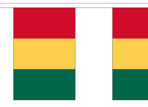 Vlaggenlijn Carnaval Limburg stof XL rood/geel/groen
