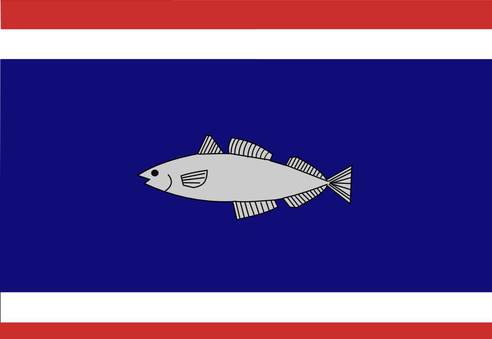 Urker vlag, vlag Urk 30x45cm