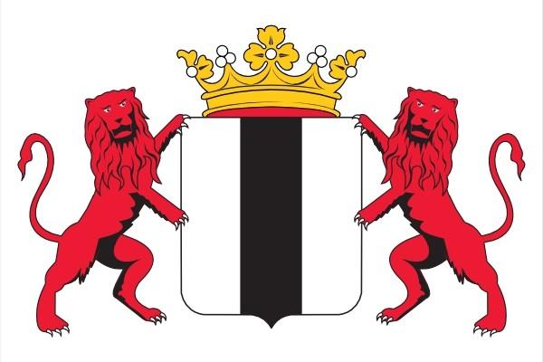 vlag Delft met wapen en leeuwen 150x225cm