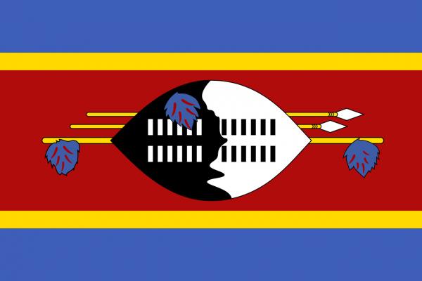 Vlag Swaziland 100x150cm Glanspoly