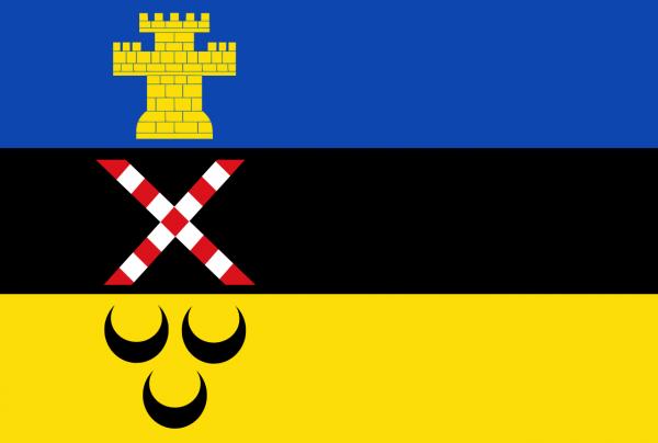 Grote vlag Meierijstad