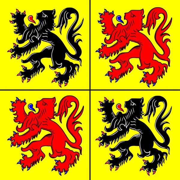 Vlag Henegouwen 100x150cm