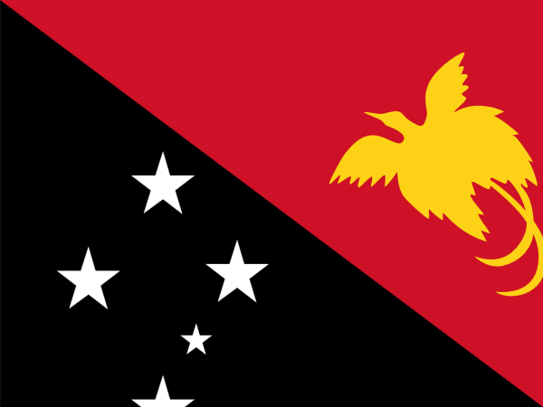 vlag Papoea Nieuw Guinea 20x30cm