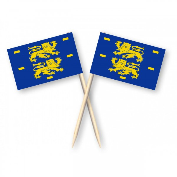 Cocktailprikkers met vlag West-Friesland, Kaasprikkers, 50 stuks