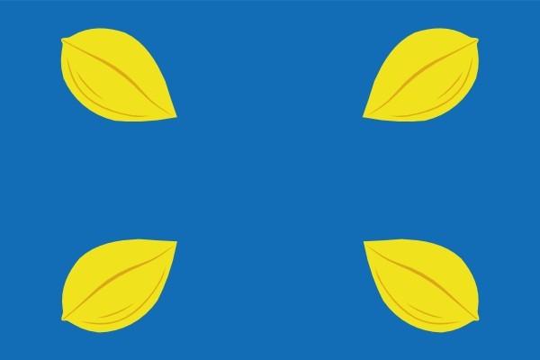 Vlag gemeente Hilversum Hilversumse Bootvlag 70x100cm