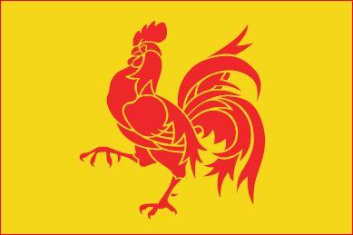 vlag Wallonie rode Haan 90x150cm Waalse vlaggen kopen