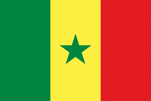 Vlag Senegal 100x150cm Glanspoly