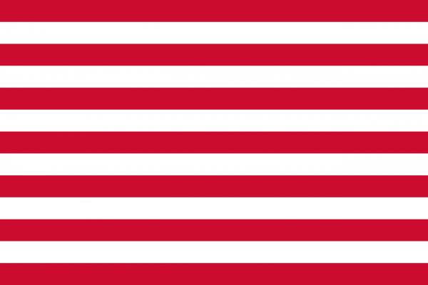 Grote vlag Goes