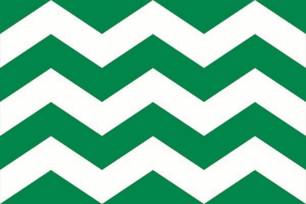 Vlag Westland   Westlandse vlaggen 50x75cm