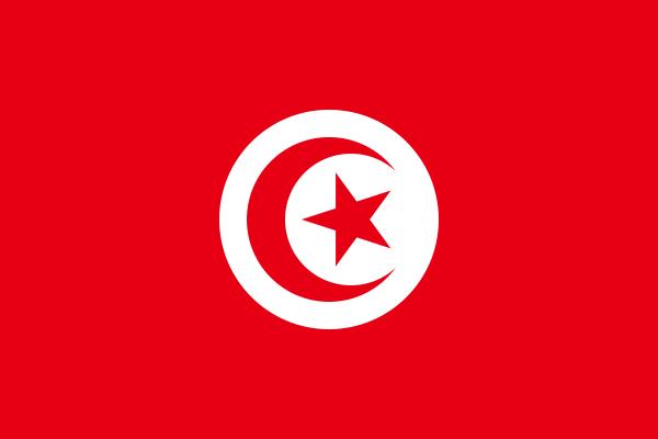 vlag Tunesië | Tunesische vlaggen 200x300cm