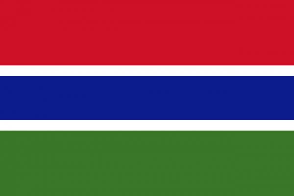 Vlag Gambia 100x150cm Glanspoly