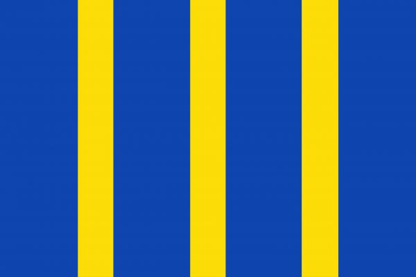 Grote vlag Twisk