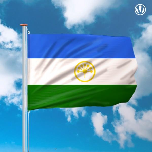 Mastvlag Basjkortostan