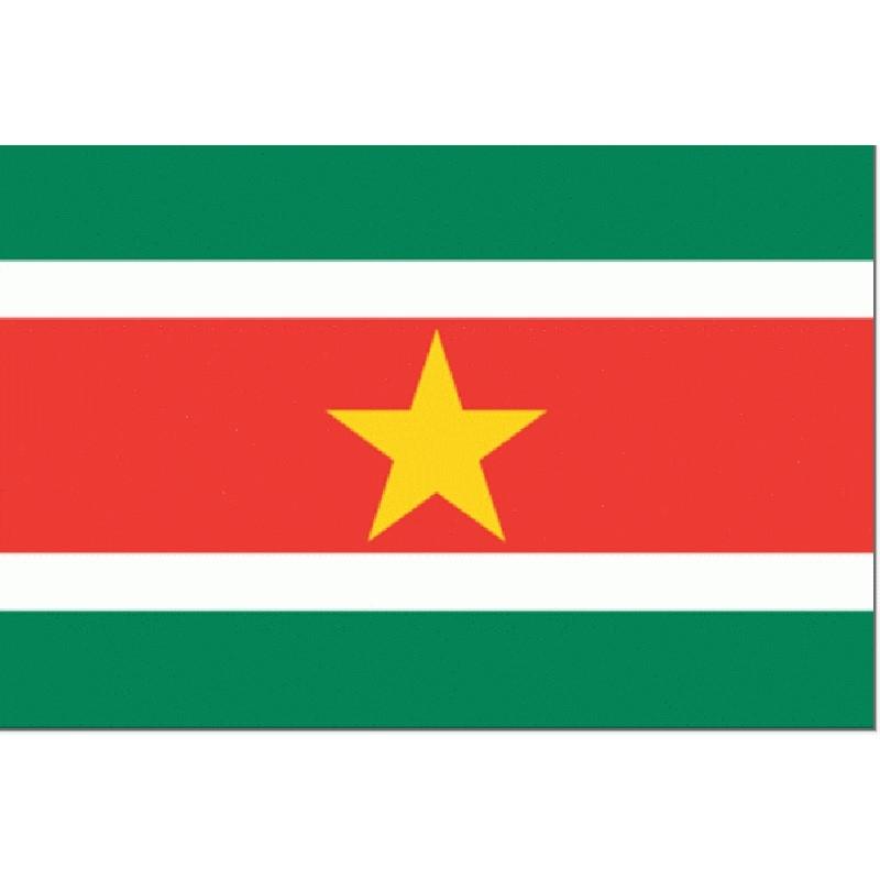 vlag Suriname 30x45cm Gastenvlag Landenvlag
