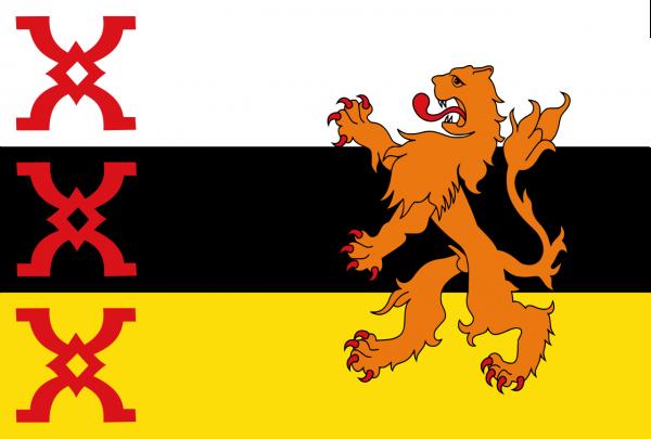 Grote vlag Someren