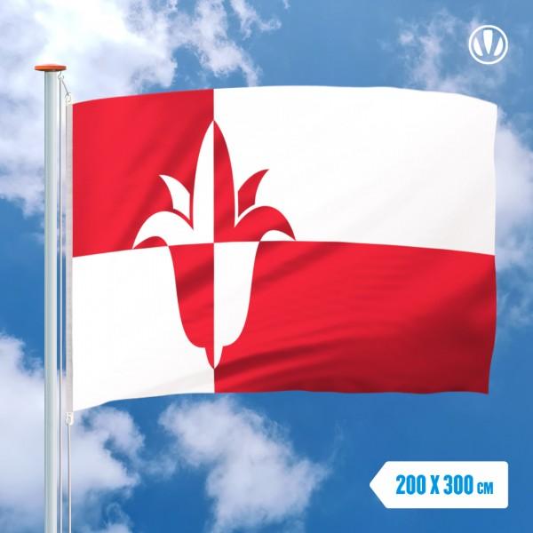 Grote Mastvlag Bernheze