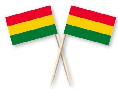 Cocktailprikkers Carnaval Limburg rood geel groen, Mestreech Kaasprikkers, 50 stuks