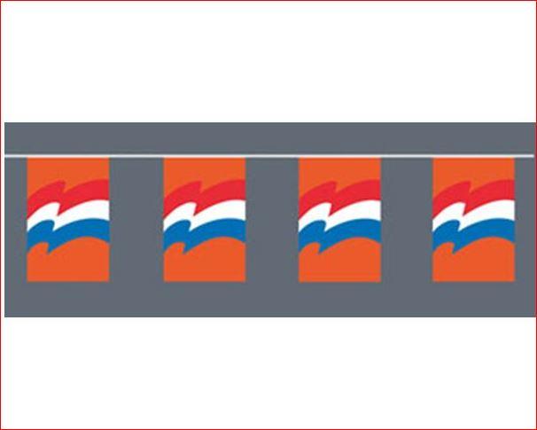 Vlaggenlijn Oranje met Nederlandse vlag 10m XL