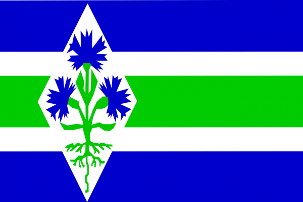 Grote vlag Blaricum