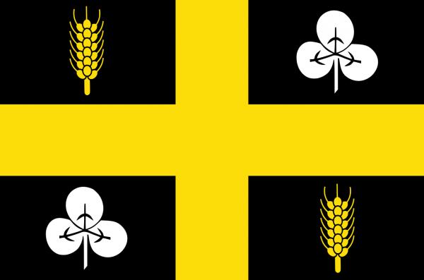 Grote vlag Raalte